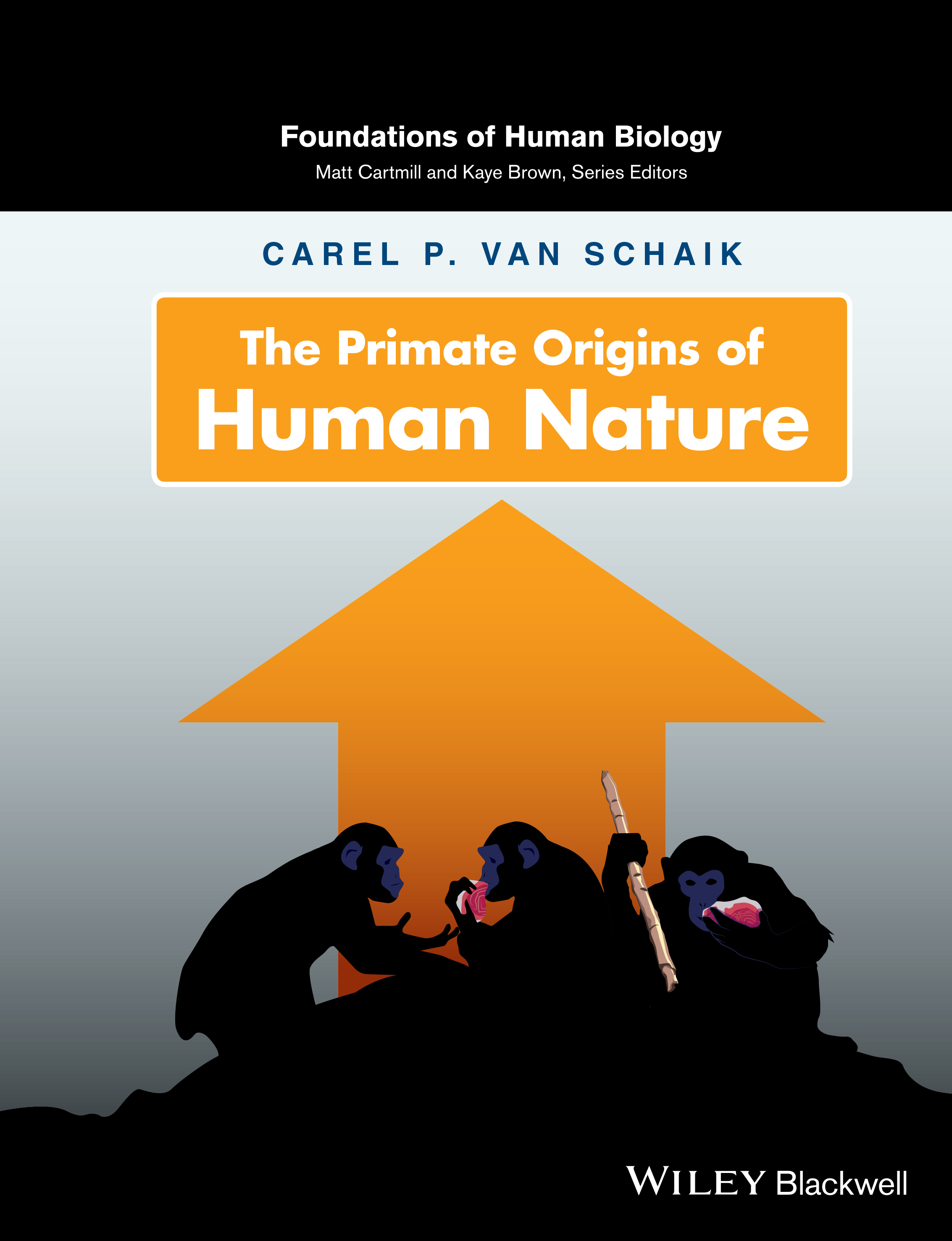 Anthropology Perspective On Human Nature